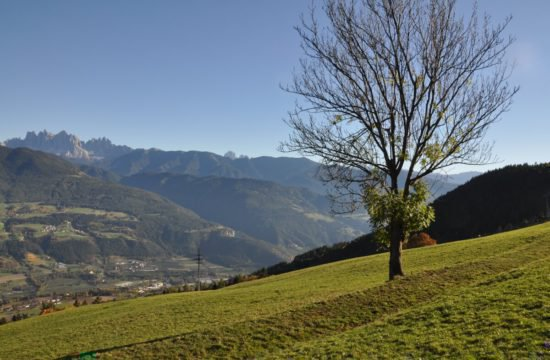 Bergchalet Feichterhof | Tils - Brixen