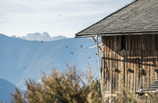 bergchalet-feichterhof-tils-brixen-16
