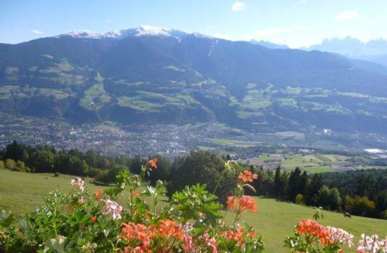 Chalet alpino Feichterhof | Tiles - Bressanone 25