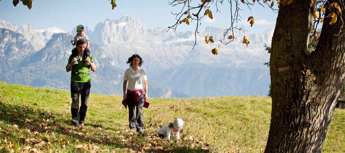 Herbstliches Wandern und Genießen rund um den Pfeffersberg